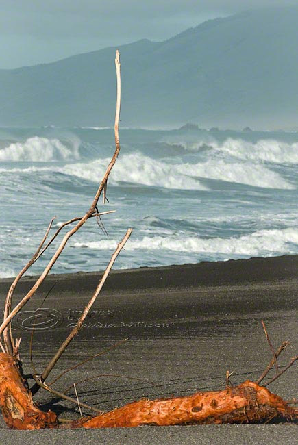 Beach Photo surf ocean waves black sand log print 8x12&quot;