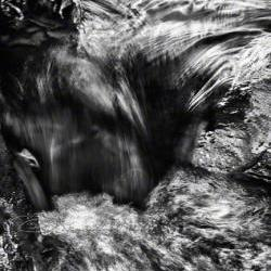 Abstract Photo black &amp; white fine art print flowing motion 8x12&amp;quot; print